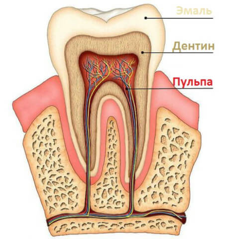 caries_treatment_about